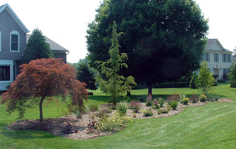 Lush, healthy looking lawns don't get that way by accident.   They need consistent, proper care.