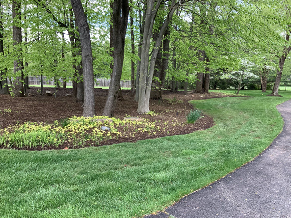 Lawns get compacted over time — especially with regular use.  The more compact the soil, the harder it is for the grass to get the water and nutrients it needs to stay healthy.