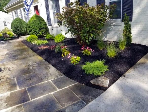 Planting bed design and installation